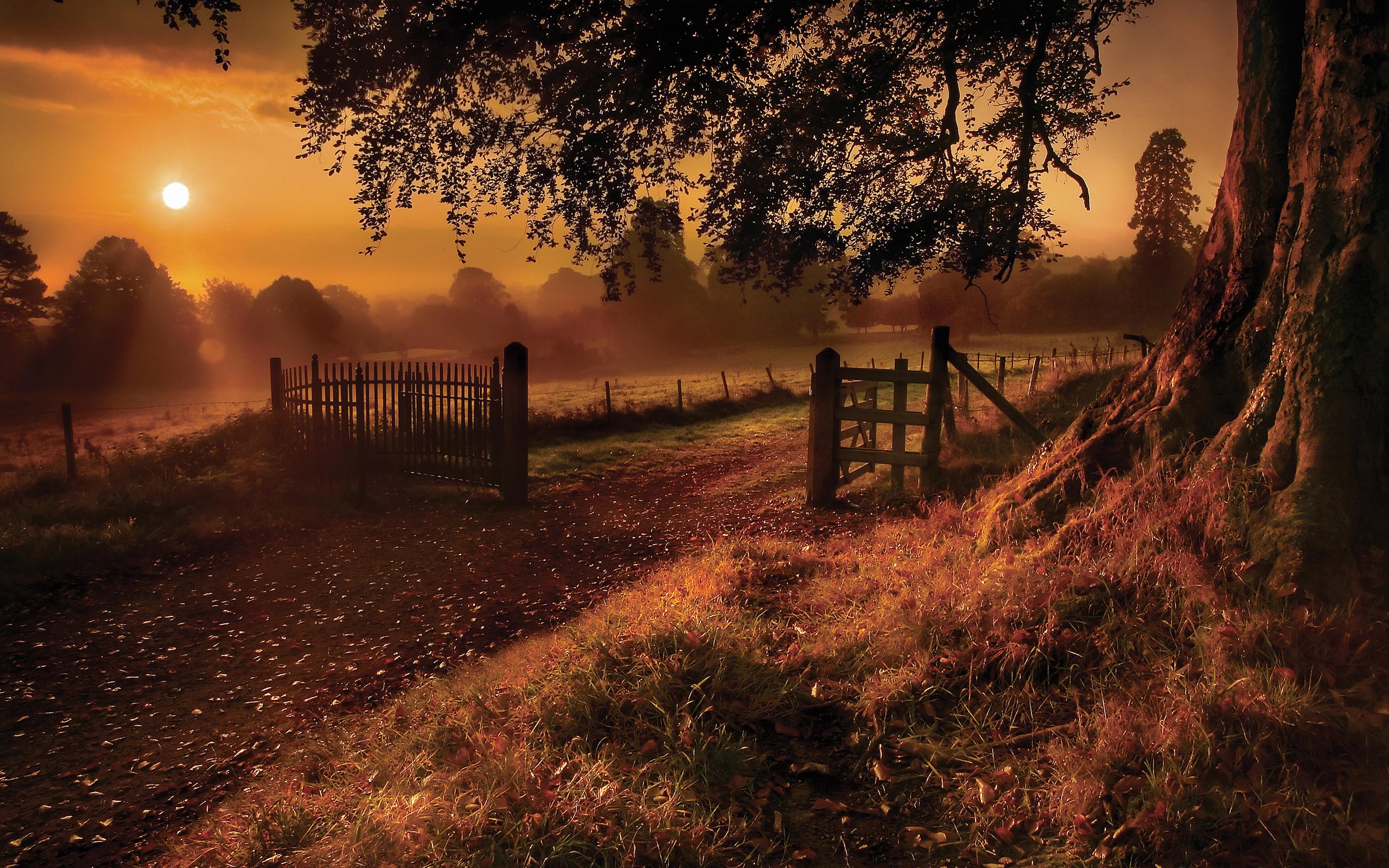 Download old road gate farm ranch wallpaper 2560x1600jpg 2560x1600