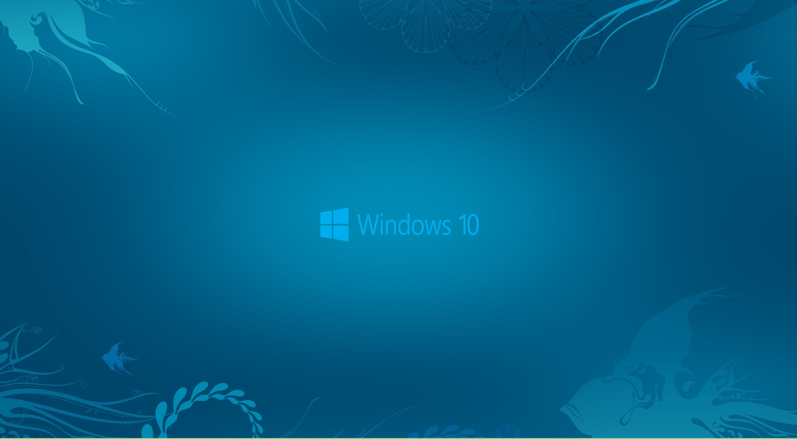 normal 16 9 hd widescreen 16 10 hd widescreen 2560x1410
