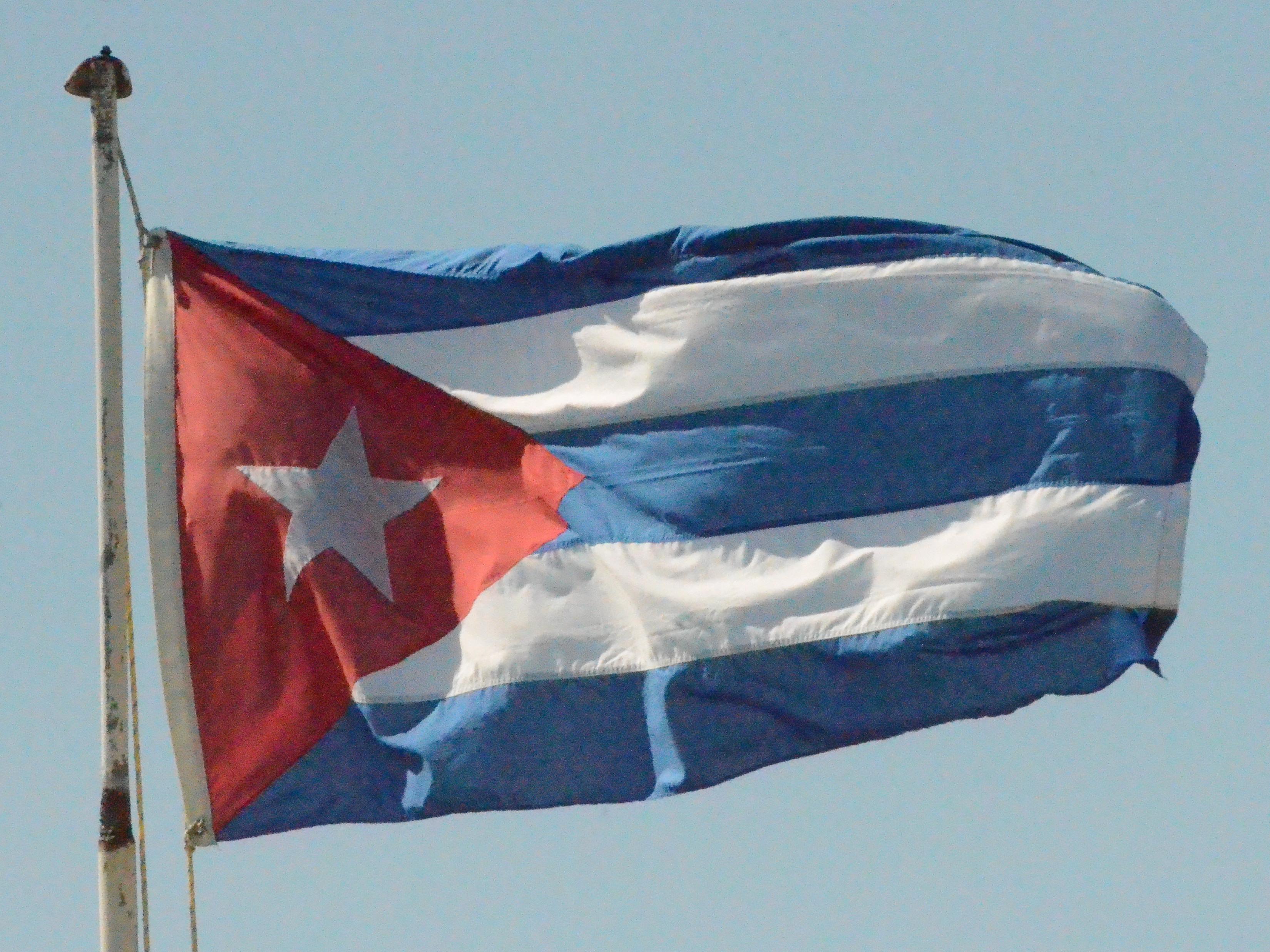 Top Cuban Birds Wallpapers 3299x2474