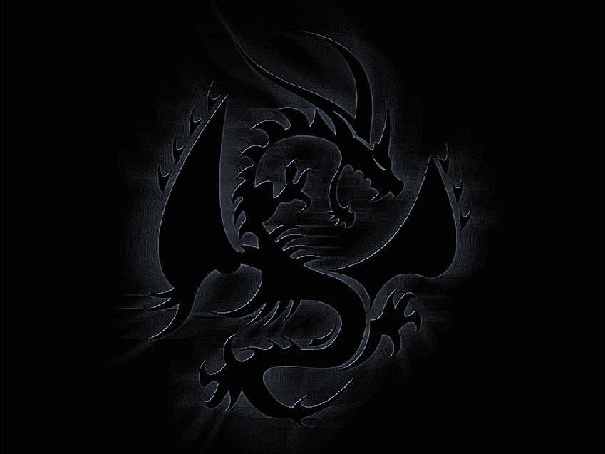 Dragon Wallpaper hd 1080p The Black Dragons Your hd Wallpaper Id59875 849x637