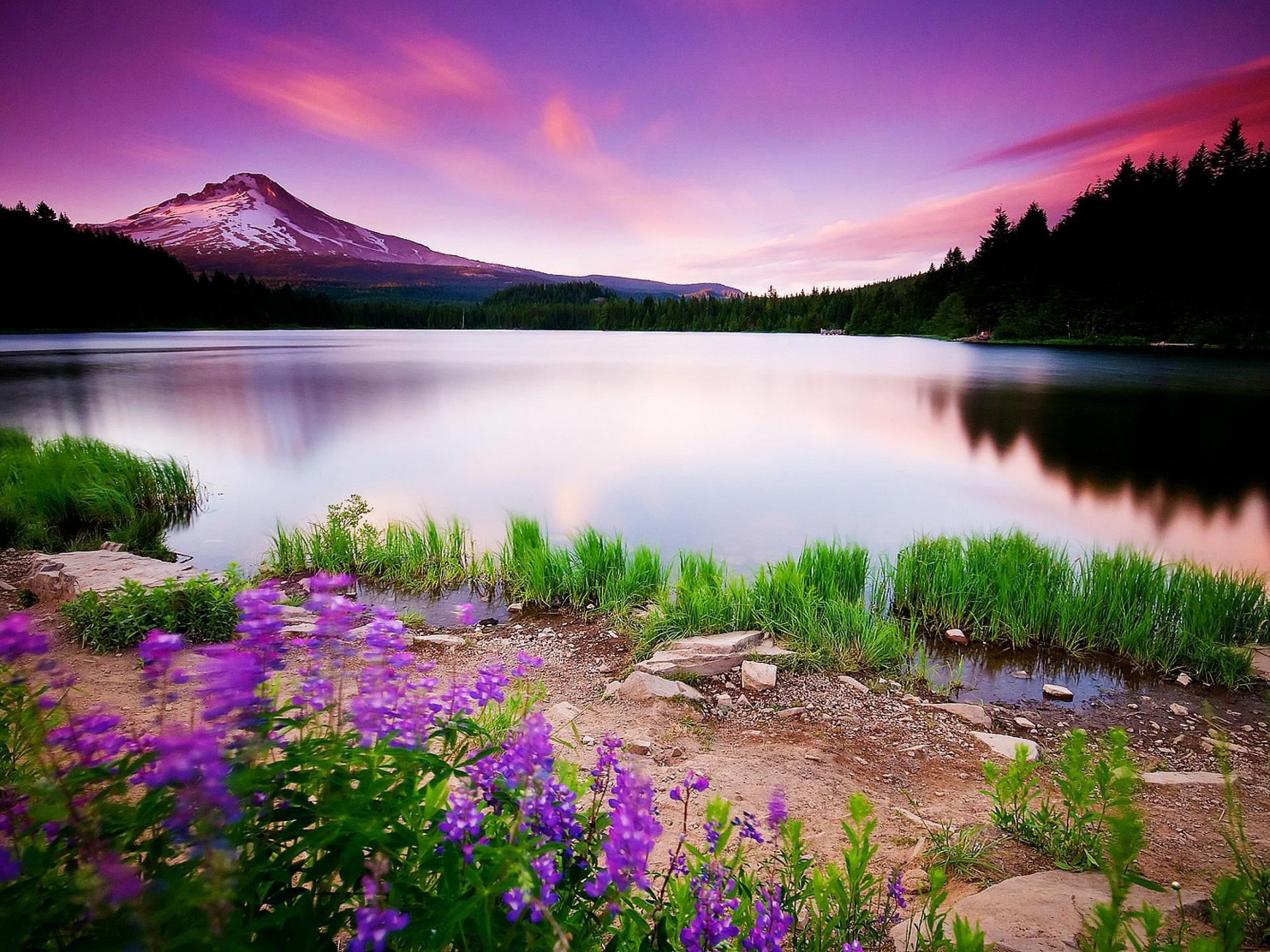 Beautiful view wallpaper hd | HD Wallpaper