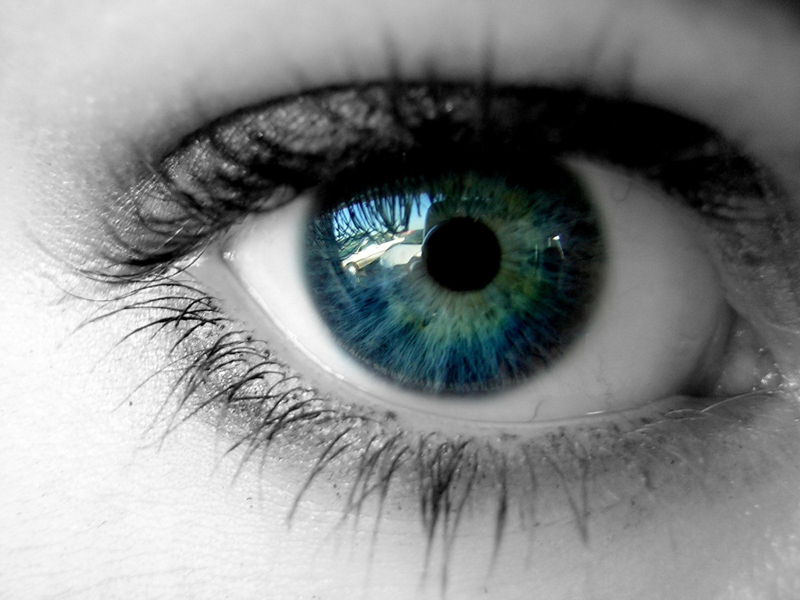 Green Eyes Wallpapers   New HD Wallpapers 1600x1200