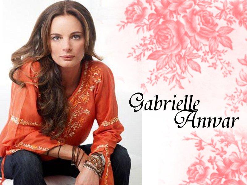 Gabrielle Anwar   Burn Notice Wallpaper 30513312 800x600