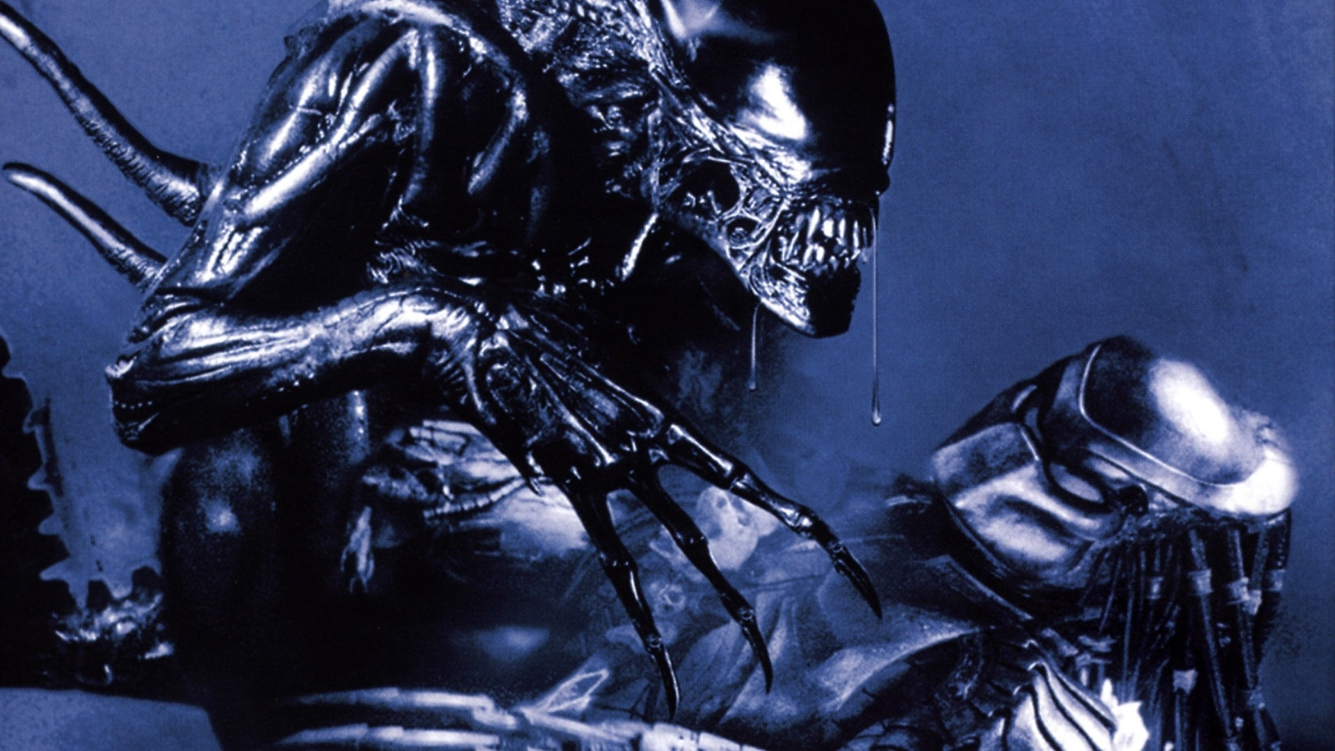 1920x1080px Alien Vs Predator Wallpaper Wallpapersafari