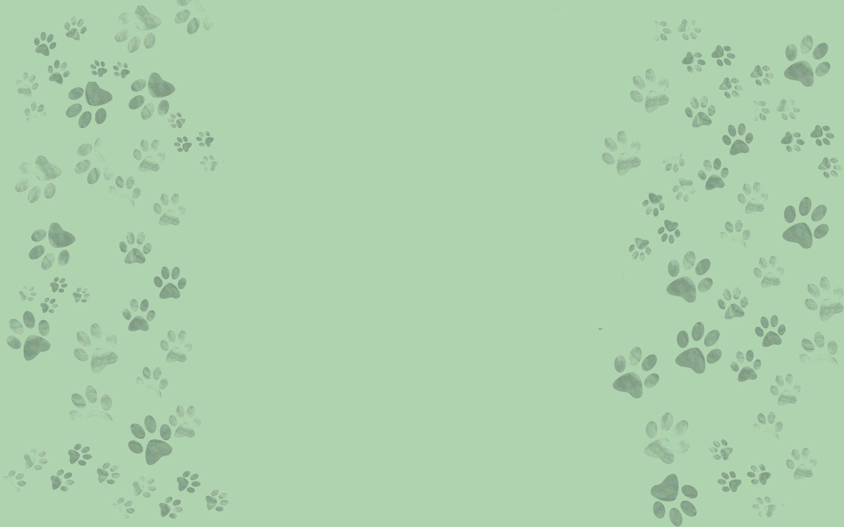 48] Pet Backgrounds and Wallpaper on WallpaperSafari 1680x1050