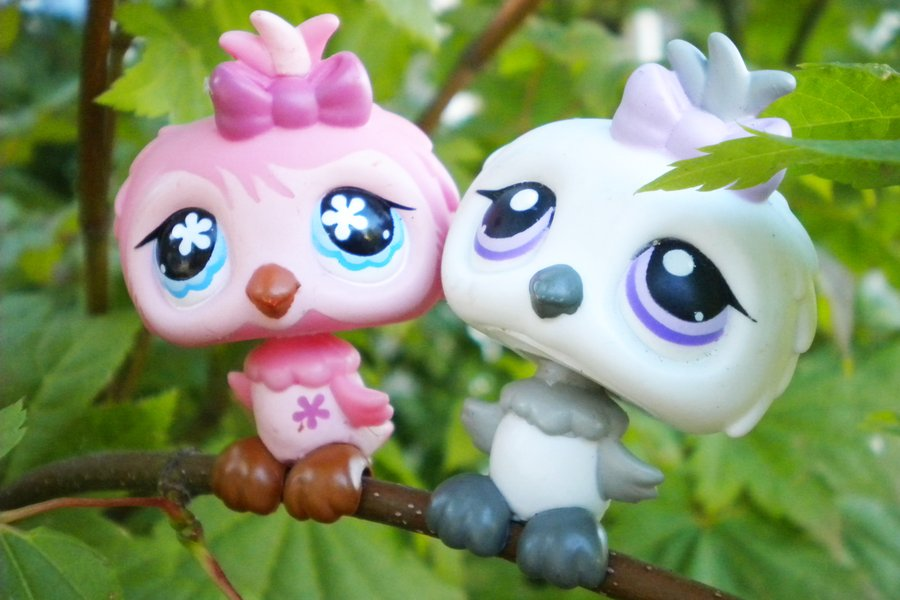 lps owls by MurderShannon 900x600