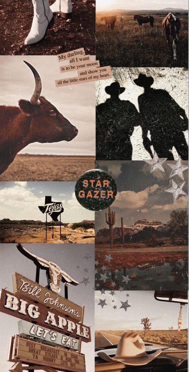 made by stella oland06 Western photography Western wall art 611x1200