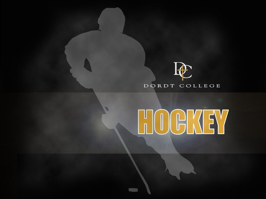 Cool Hockey Backgrounds 1024x768