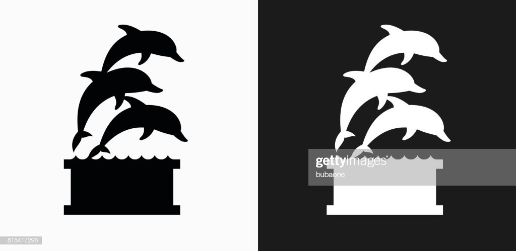 Dolphins Jumping Icon On Black And White Vector Backgrounds High 1024x499
