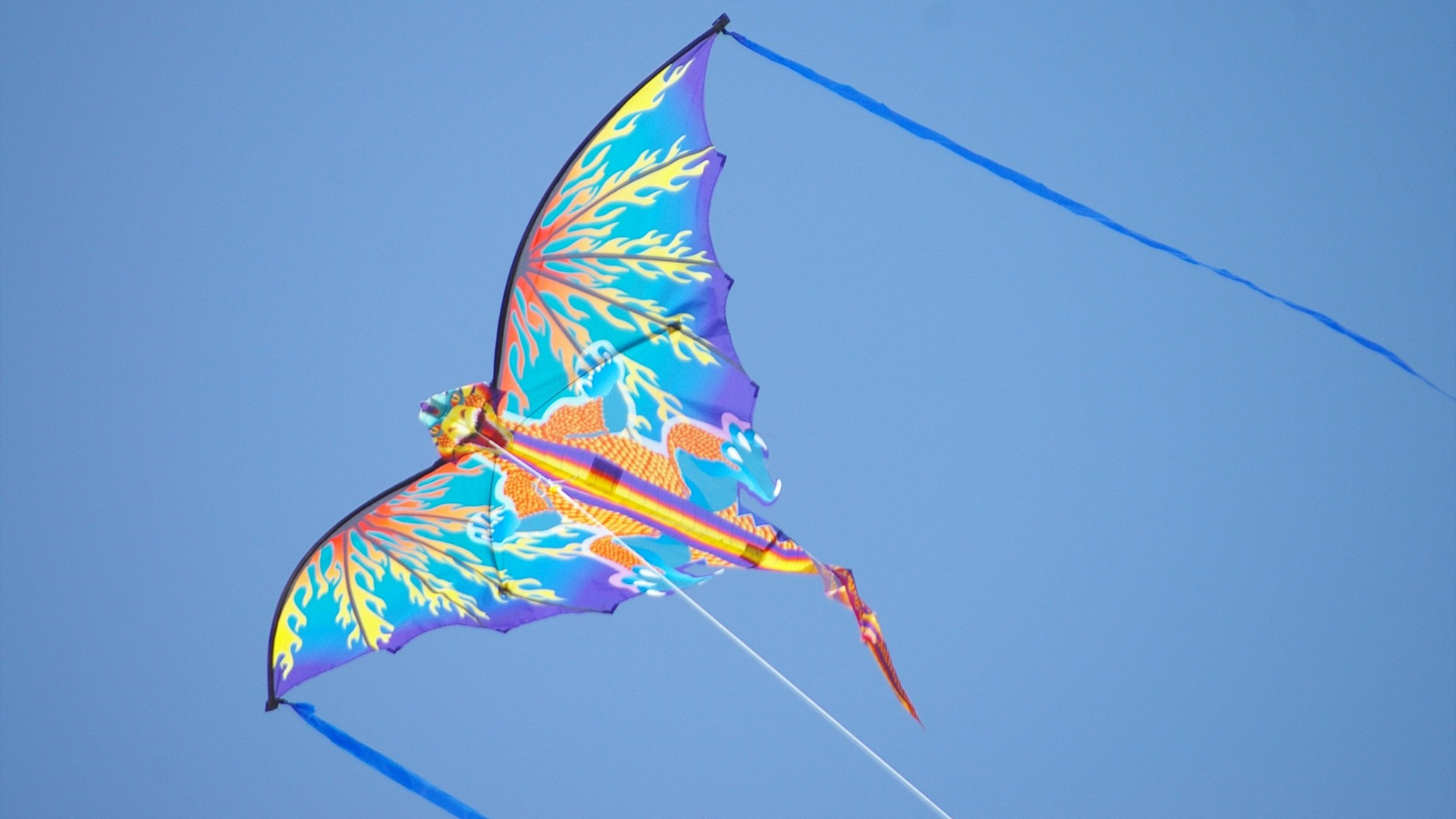 Kite in Sky Photo Background HD Wallpapers 1920x1080