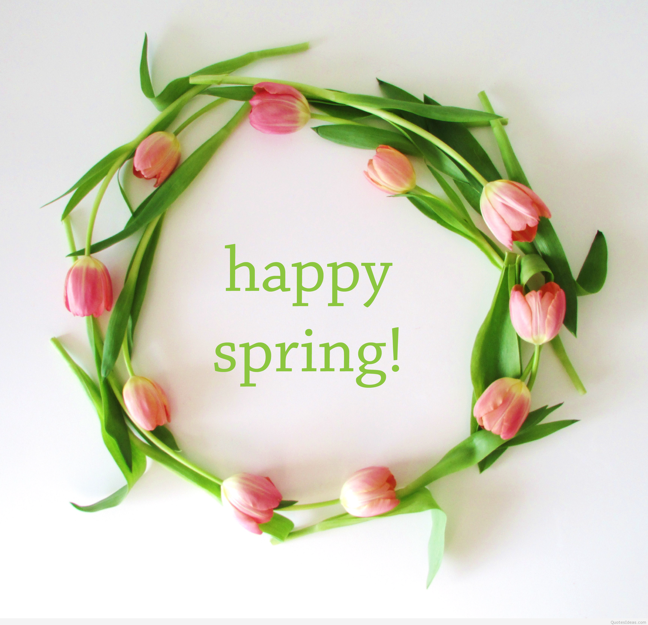 happy spring pics hd 2637x2542