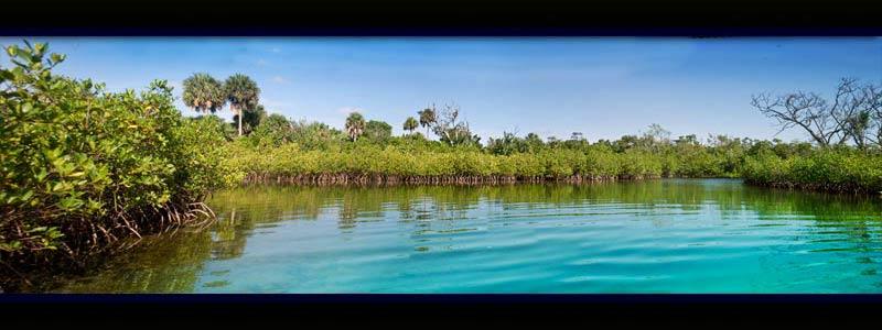 Florida Scenery Wallpaper Wallpapersafari