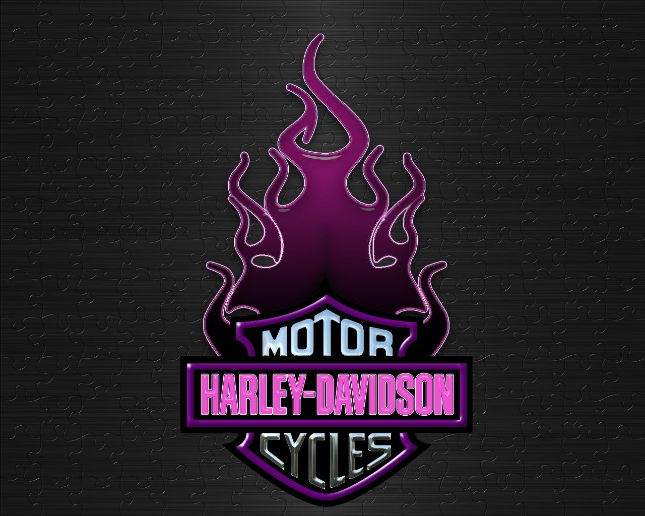 Free Download Purple Harley Davidson Logo Wallpaper