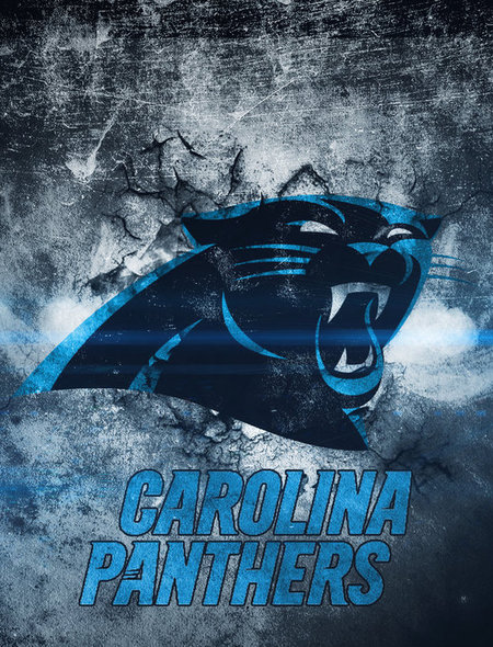 Carolina Panthers Wallpaper for Phones and Tablets 450x590
