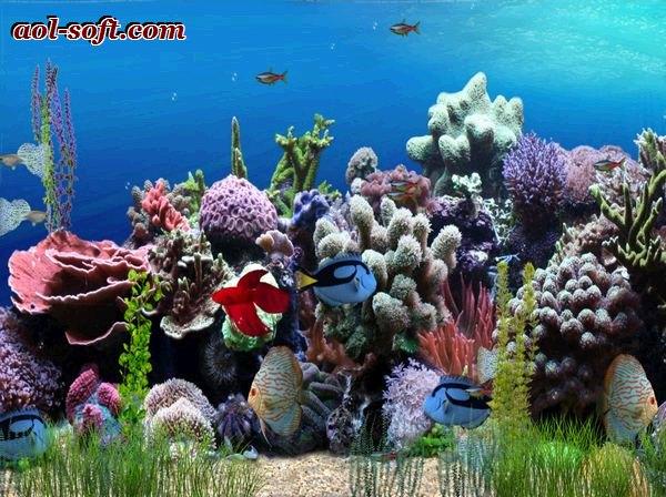Aquarium Animated Wallpaper Screenshot Desktop Themes Wallpaper 600x448