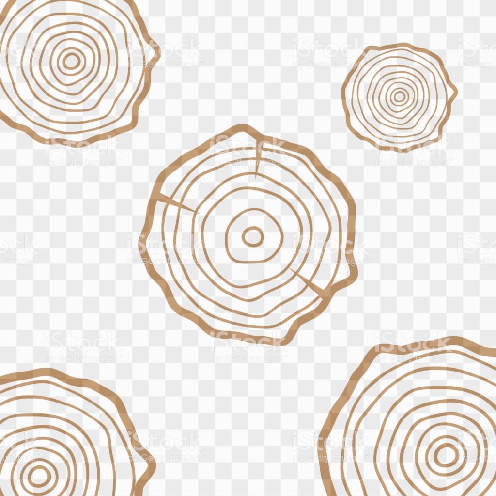 Tree Rings Background Saw Cut Tree Trunk Texture Wood Texture 1024x1024