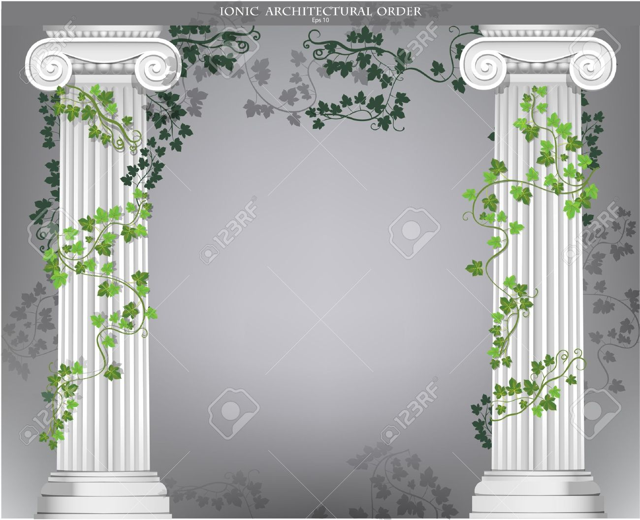 Background With Ionic Columns Entwined With Ivy Royalty 1300x1057