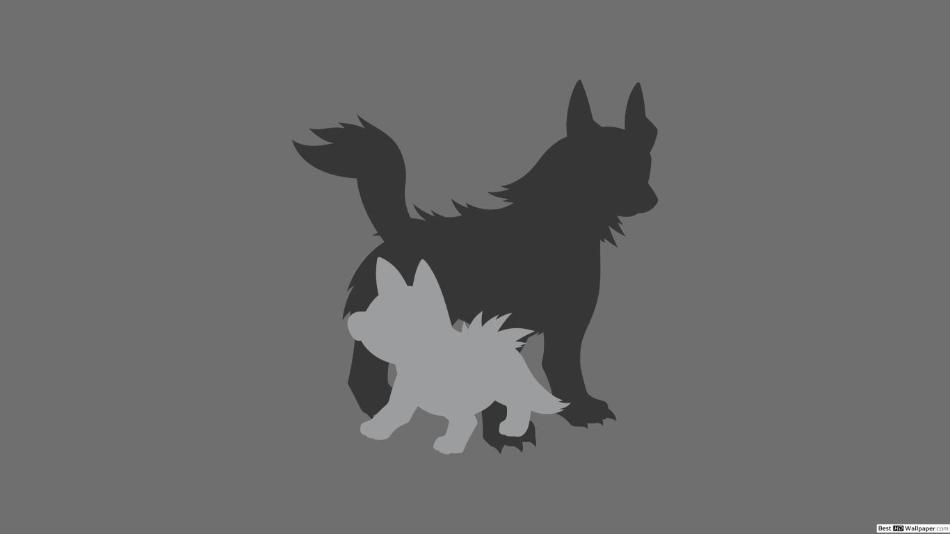 Mightyena and Poochyena of Pokemon HD wallpaper download 1366x768