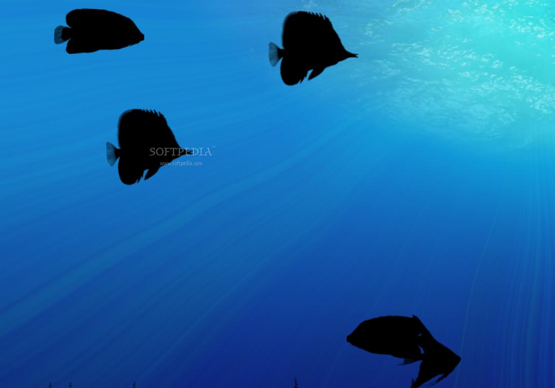 animated aquarium wallpaper Desktop wallpaper wallpaper kostenlos 1083x758