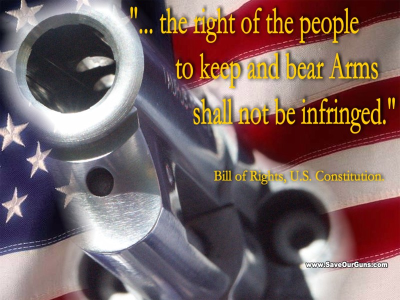 Gun Rights Wallpaper Gun rights prints   individual 800x600