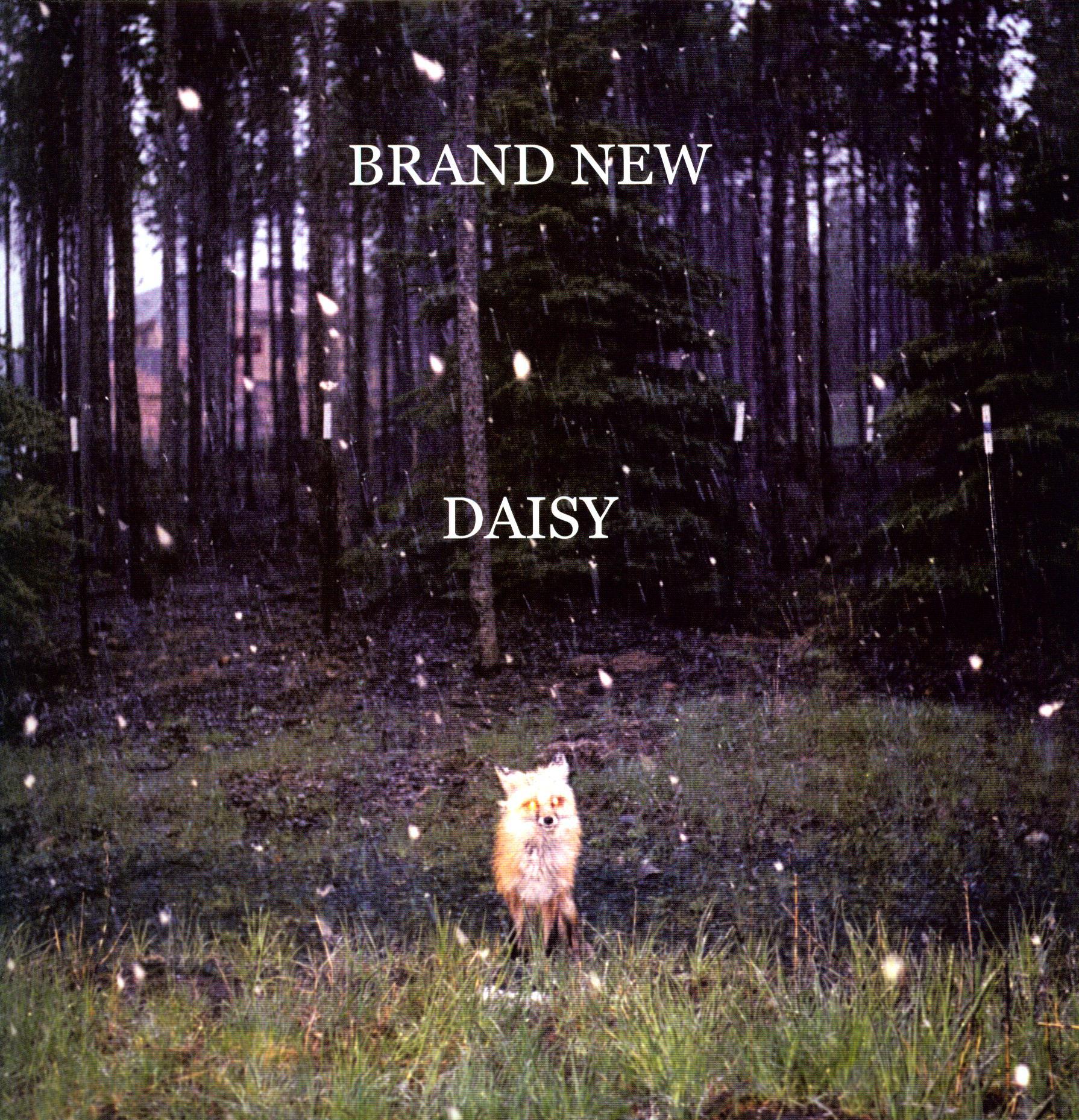 Brand New Daisy Brand new   daisy vinyl 1790x1858