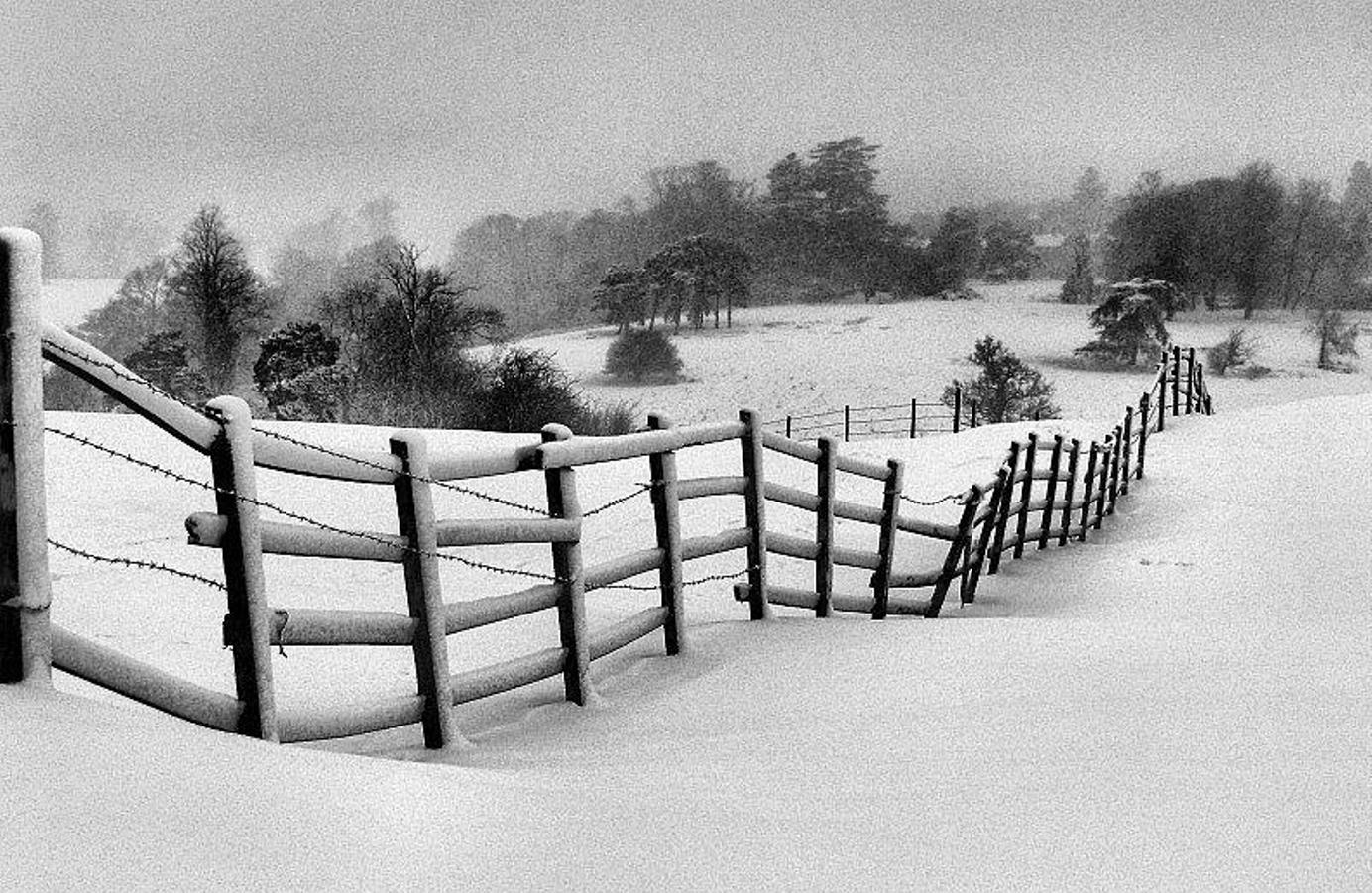 Winter In Black And White >> Download Winter Pictures Black And White Black White Winter Scene