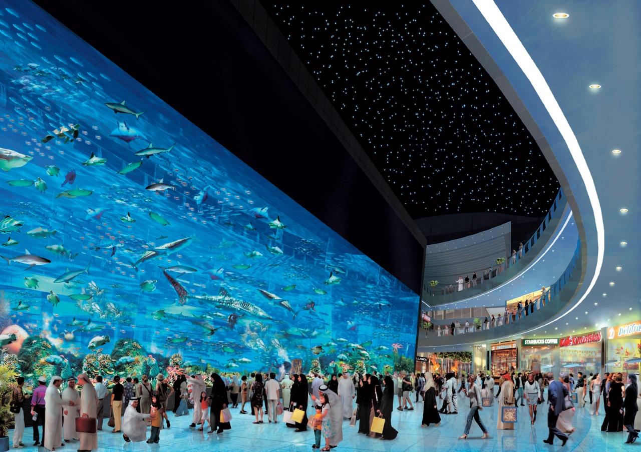 Download Dubai Mall Aquarium Wallpaper Full HD Wallpapers 1280x903