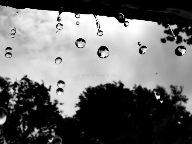 3D Rain Drops HD Wallpaper Download Hd Wallpapers 2u 640x480
