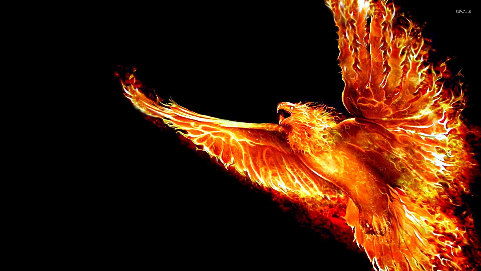 Phoenix wallpaper   Artistic wallpapers   17474 1920x1080