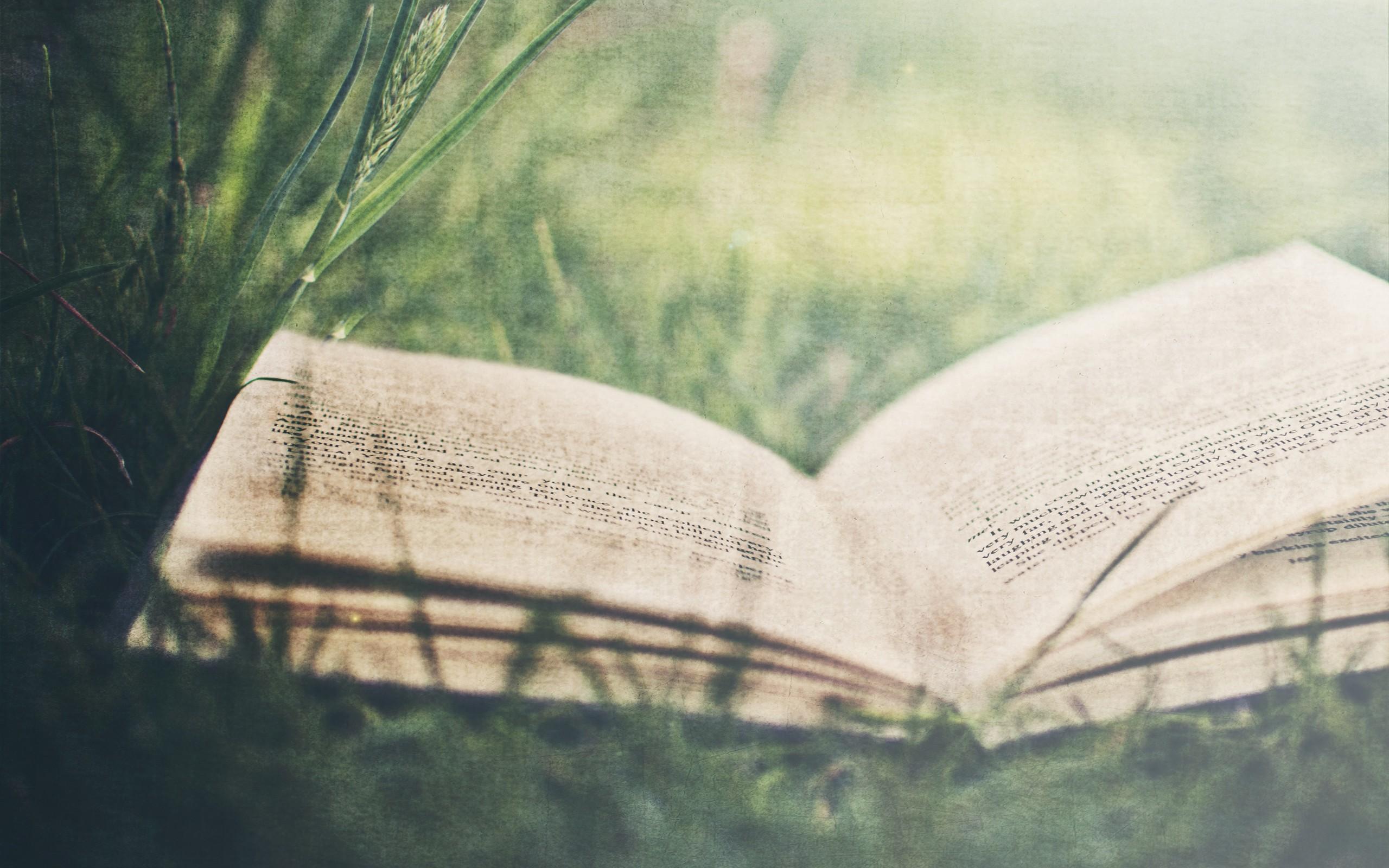 Grass books wallpaper 2560x1600 10863 WallpaperUP 2560x1600