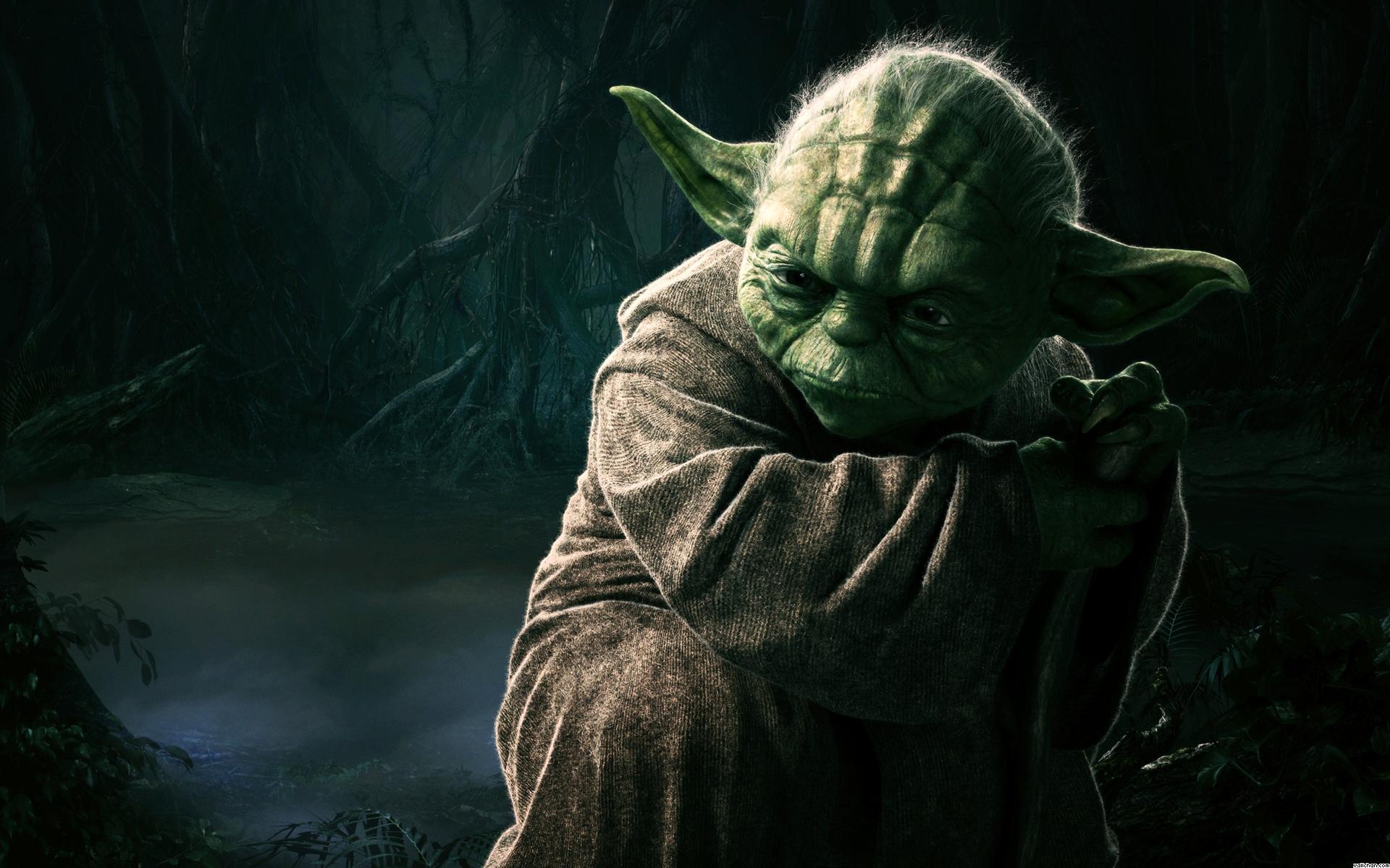 Download Yoda Star Wars HD Wallpaper 1593 Full Size 1920x1200