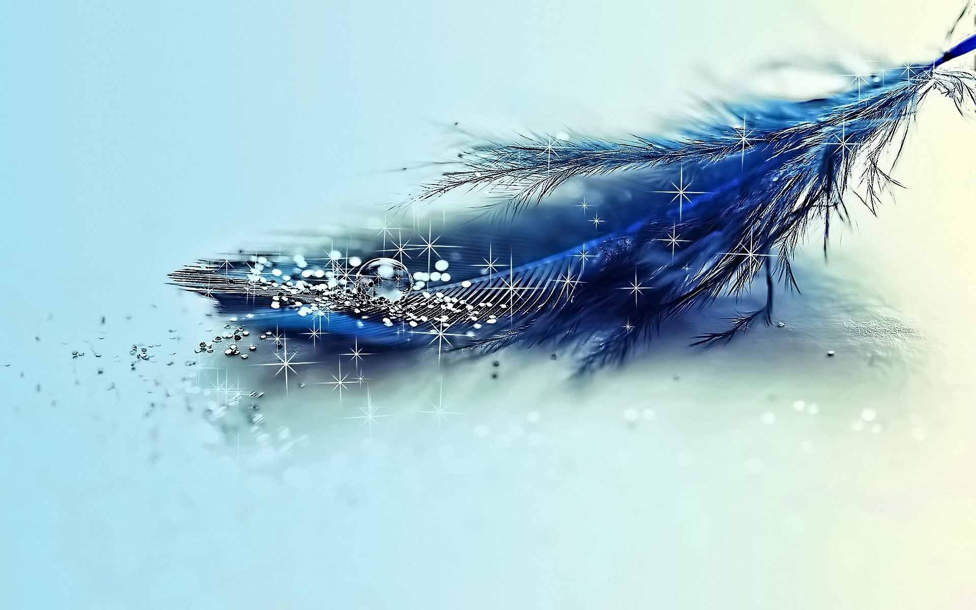 Mor Pankh Hd Wallpaper: Wallpaper With Feathers