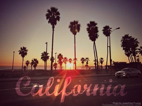 California Love 500x374