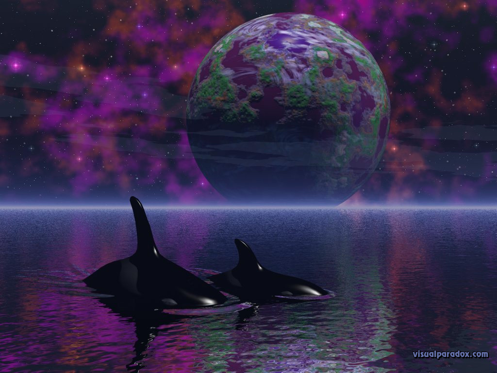 water spiritual stars space orca whales planets 3d wallpaper 1024x768