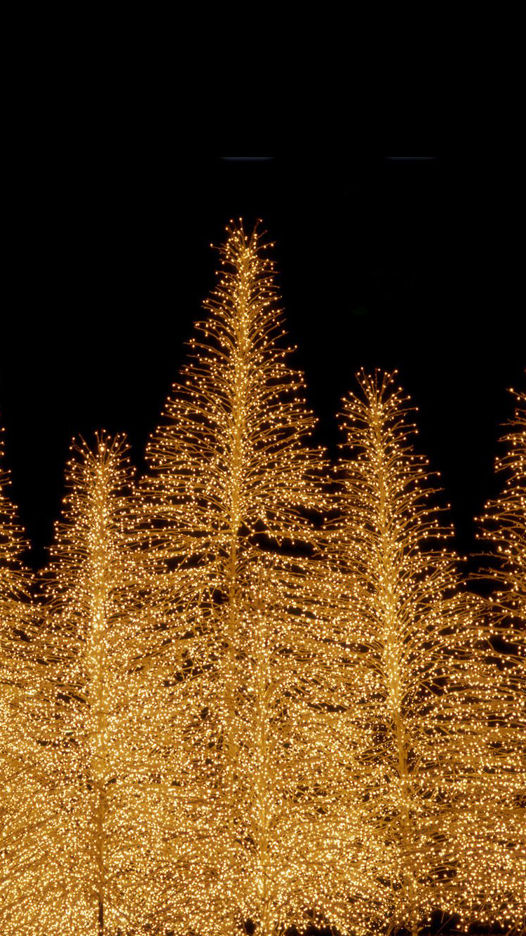 christmas lights iphone wallpaper