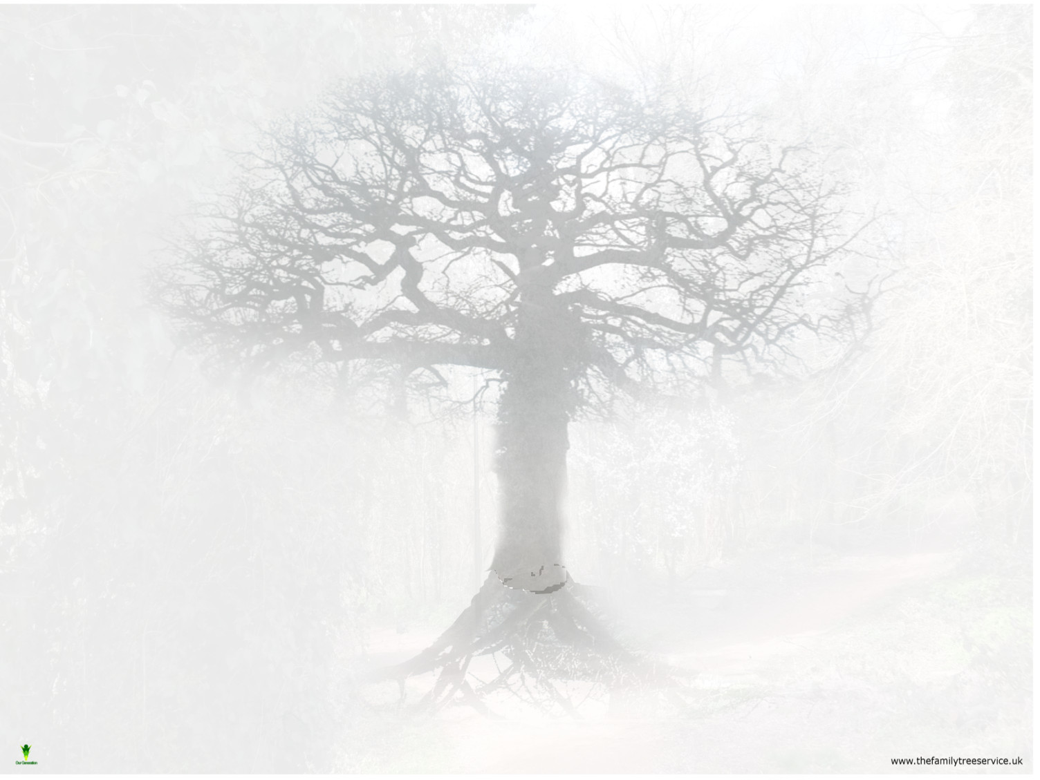 70 tree background images on wallpapersafari - Family tree desktop wallpaper ...