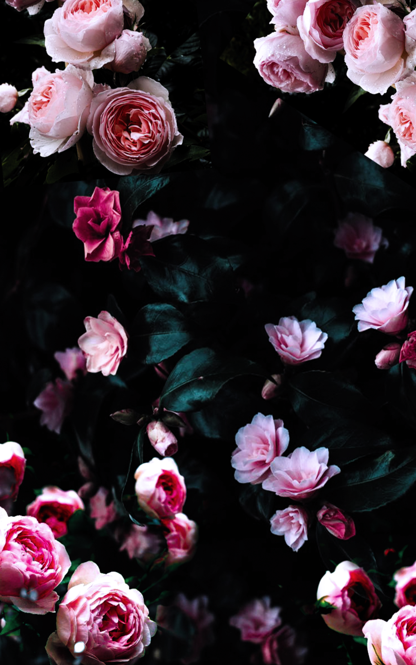 Dark Floral Wallpapers   Top Dark Floral Backgrounds 1350x2160