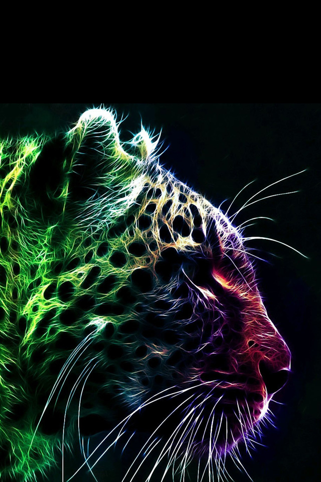 Colorful Cheetah Wallpaper - WallpaperSafari | 640 x 960 jpeg 266kB