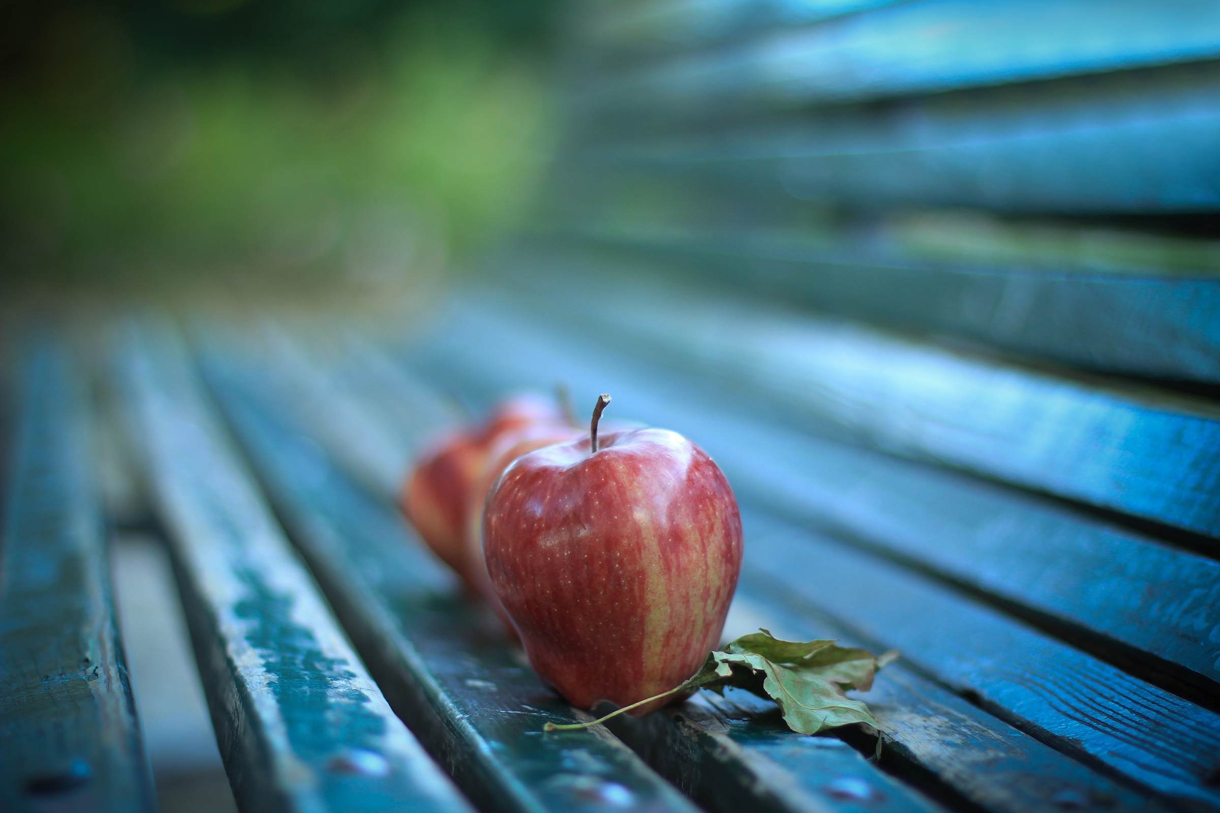 Apple Ripe Bench   Stock Photos Images HD Wallpaper HD Picture 2400x1600