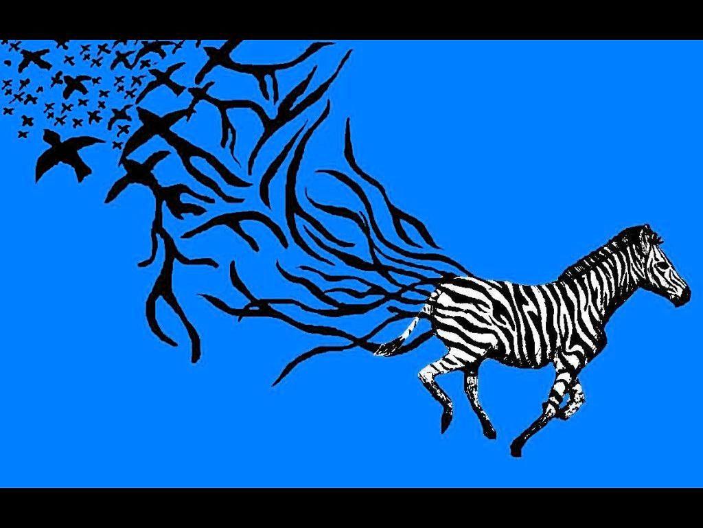 Blue Zebra Background Zebra wallpaper blue by 1024x769
