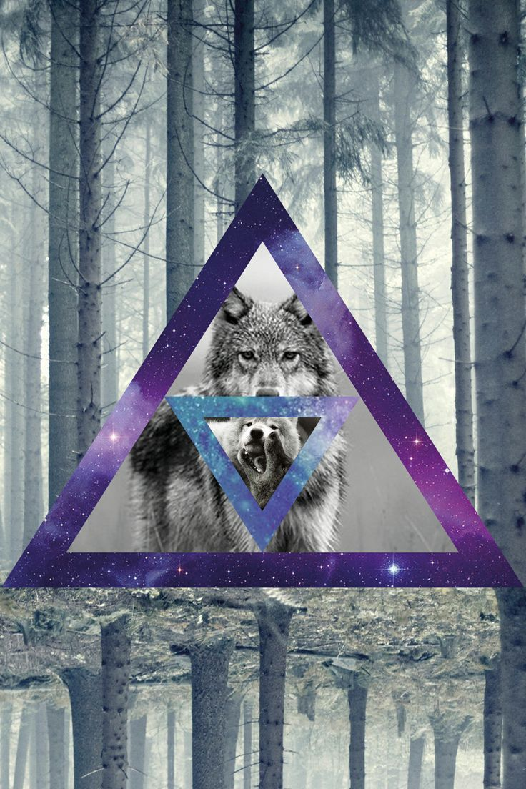 hipster wolf wallpaper wallpapersafari
