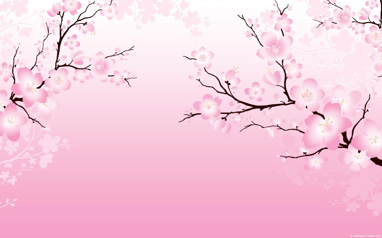 42 ] Japanese Cherry Blossom Desktop Wallpaper On