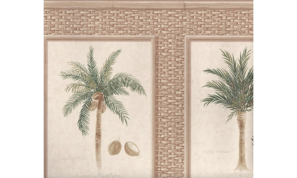 Home Brown Bamboo Palm Trees Wallpaper Border 1000x600