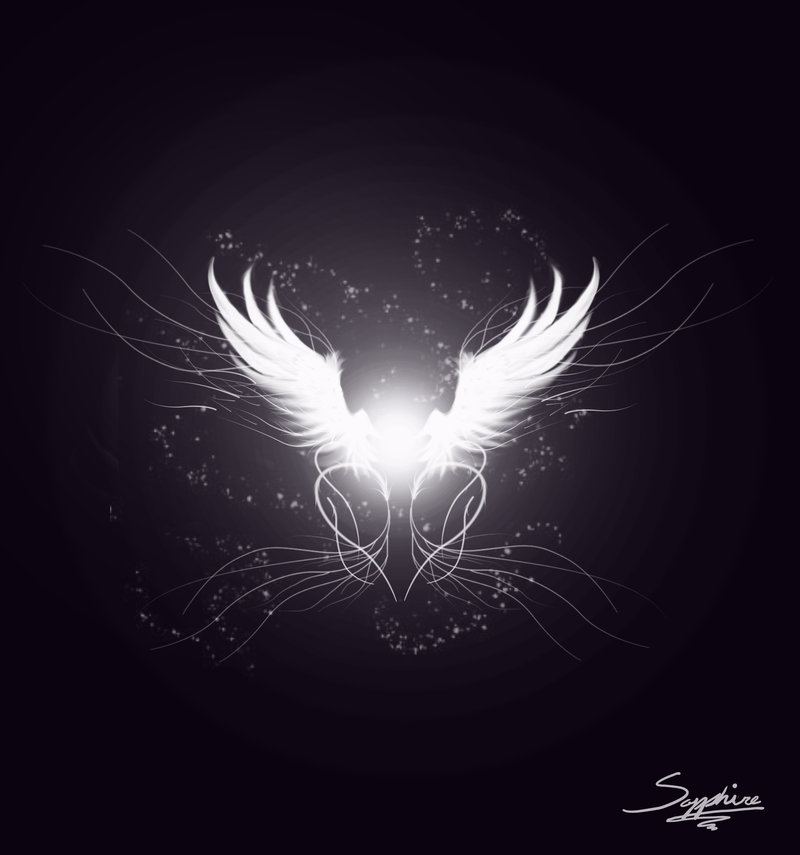 Angel Wing Design by Dannys angel 800x855