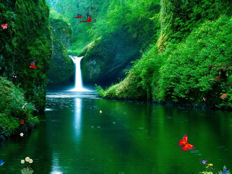 Waterfalls Screensaver   Green Waterfalls   FullScreensaverscom 800x600