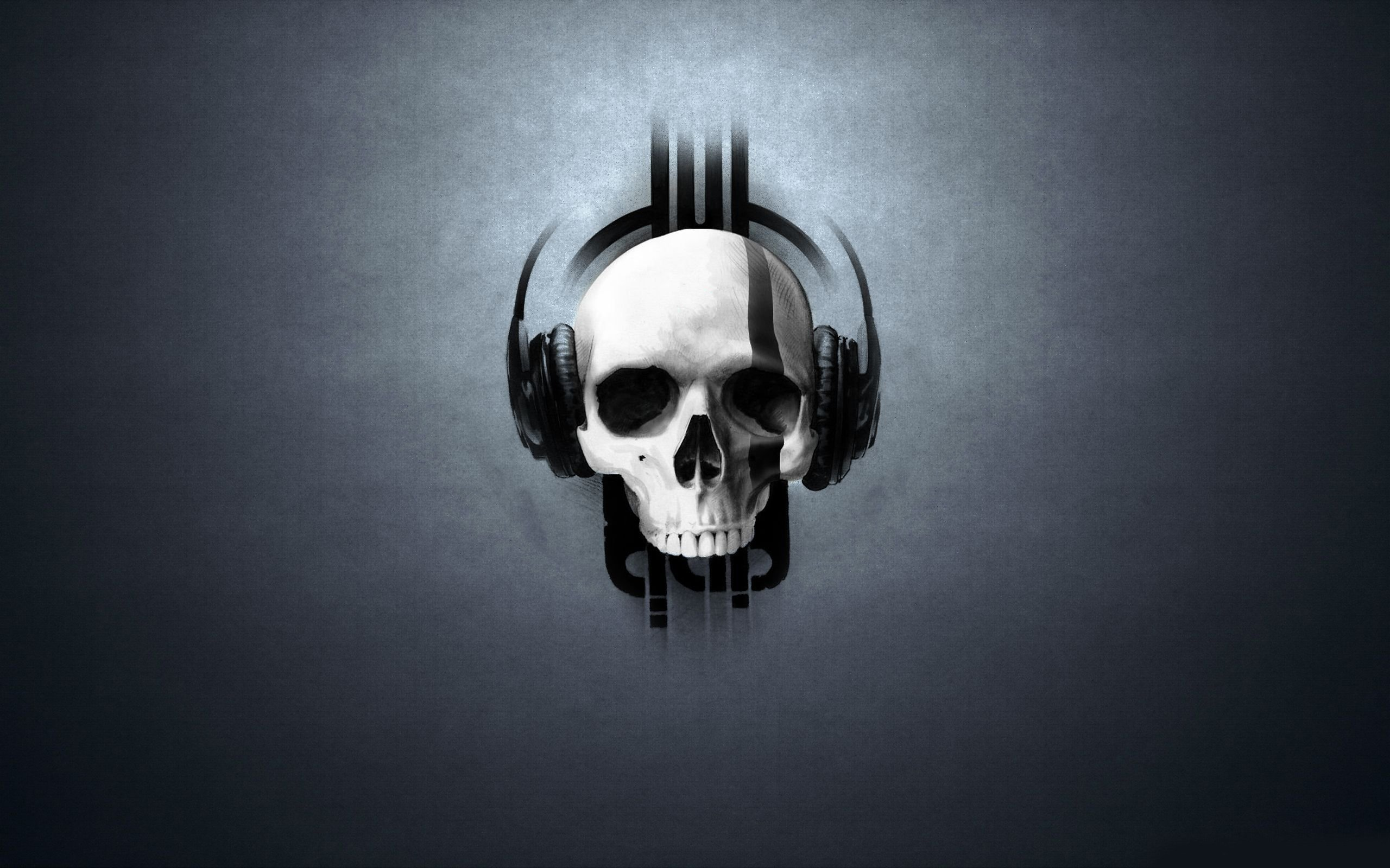 Skull Wallpaper Hd Images amp Pictures   Becuo 2560x1600