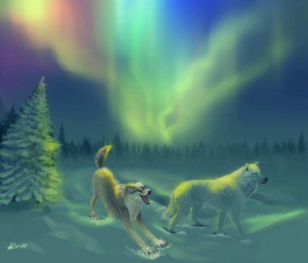 Aurora Borealis Wallpaper Wolf, wallpaper, Aurora Borealis Wallpaper ...