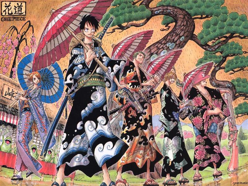 Full Anime One Piece Wallpaper 800x600