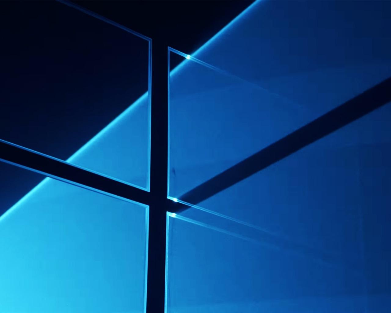 windows,  microsoft, anniversary, update, кот  № 1182164 загрузить