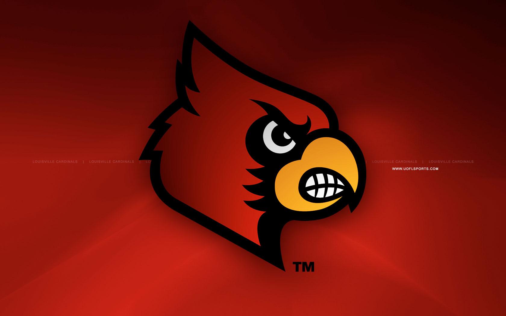 Louisville Cardinals Mascot Wallpaper 1680x1050